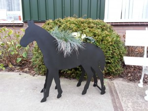 Plantenbak paard